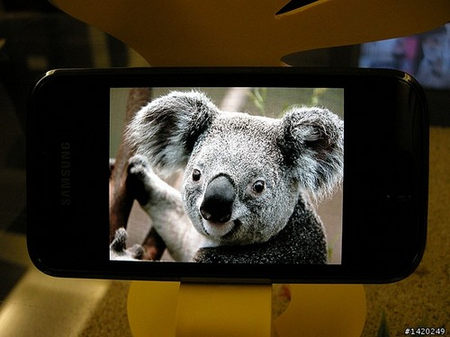 samsing-galaxy-s_superamoled-koala
