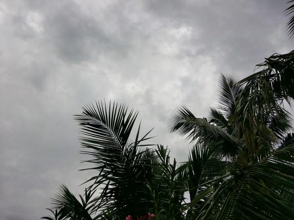 Camera-Sample-1_daylight