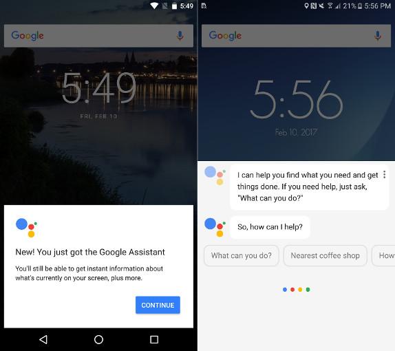 Google Assistant Google App Alpha