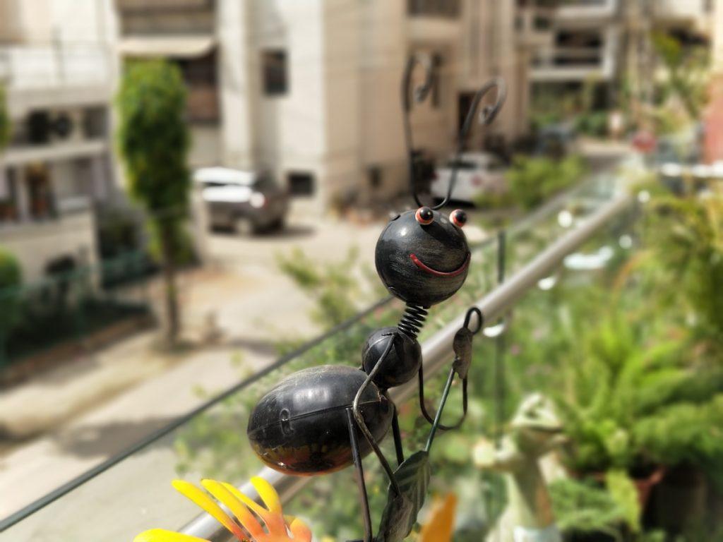 OnePlus 5 Camera Samples-0010