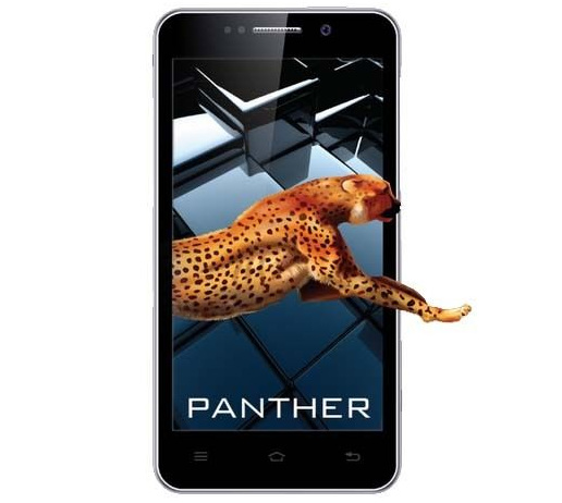 iBall Andi 5K Panther