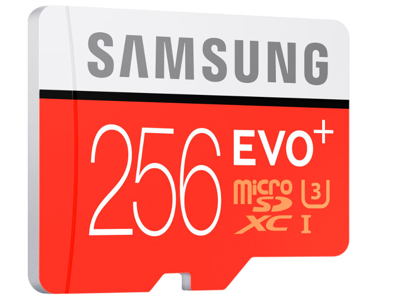 Samsung Evo Plus 256GB microSD card