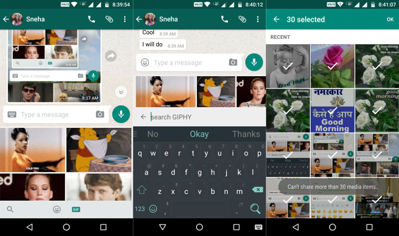 whatsapp-giphy-gif-search-and-media-sharing
