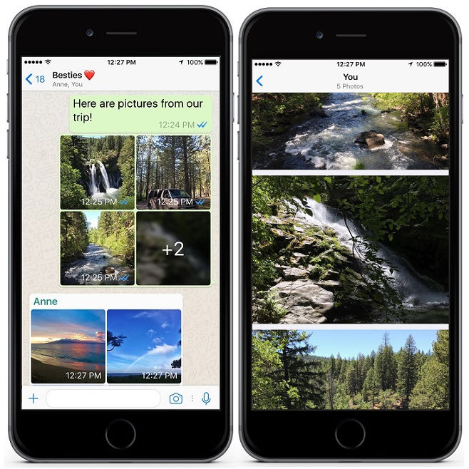 WhatsApp v2.17.30 for iPhone Albums