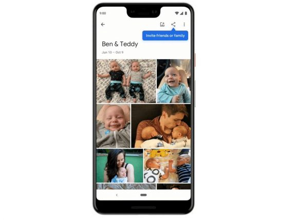 Google Photos Live Album